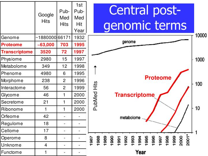 Central post genomic terms