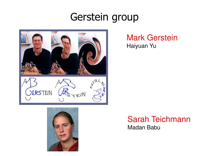 Gerstein group