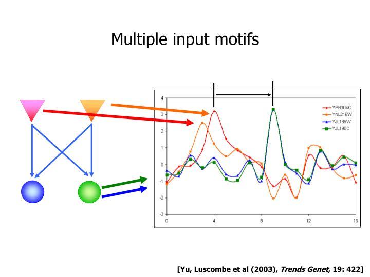 Multiple input motifs