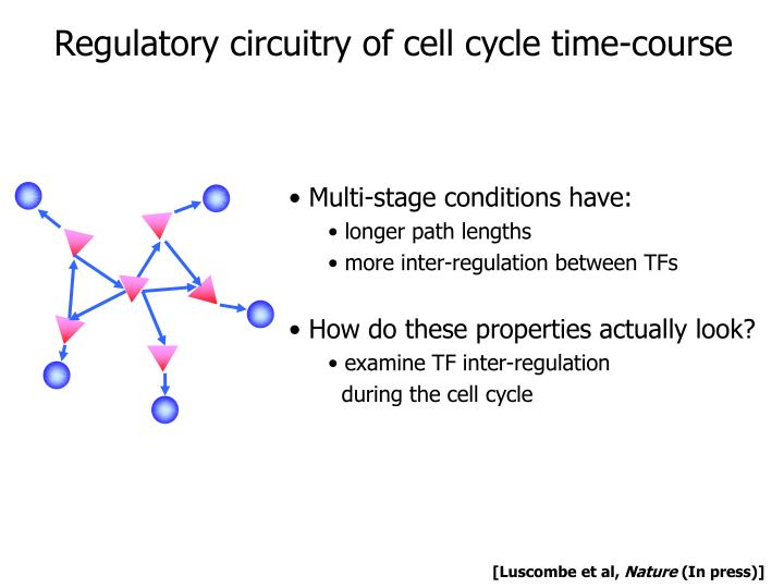 Regulatory circuitry of cell cycle time-course