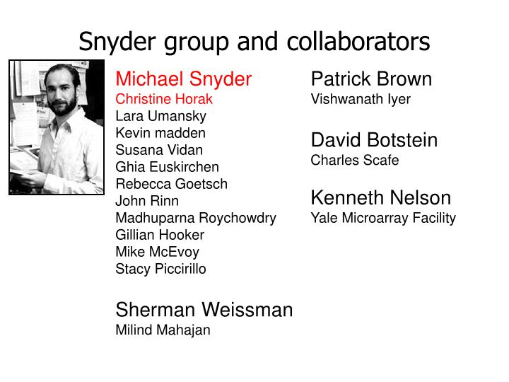 Snyder group and collaborators