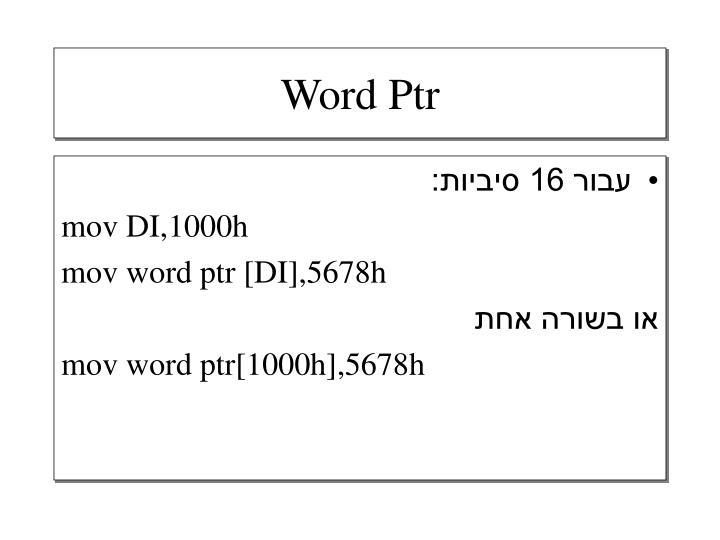 Word Ptr