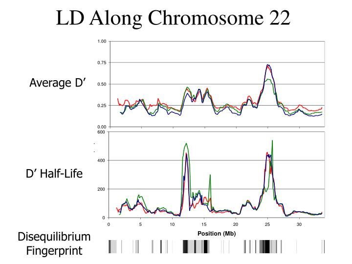 LD Along Chromosome 22