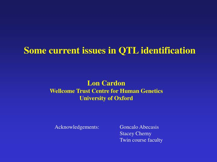 Some current issues in QTL identification