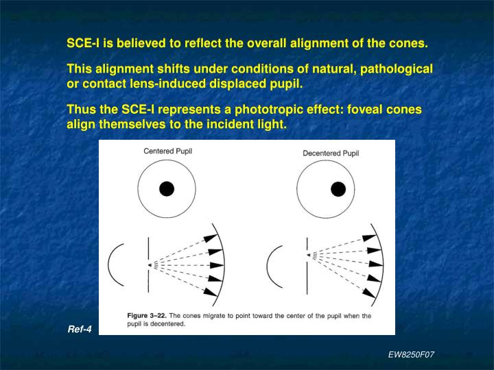 SCE-I is believed to reflect the overall alignment of the cones.