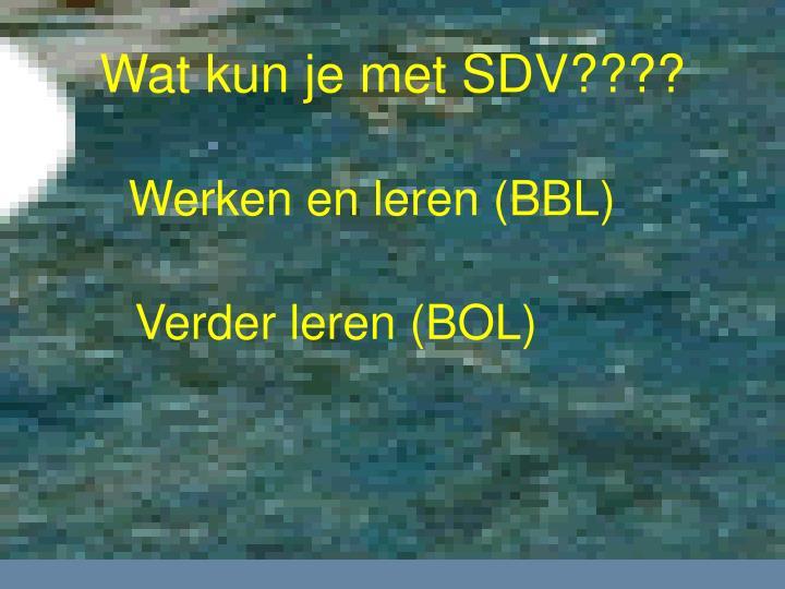 Wat kun je met SDV????