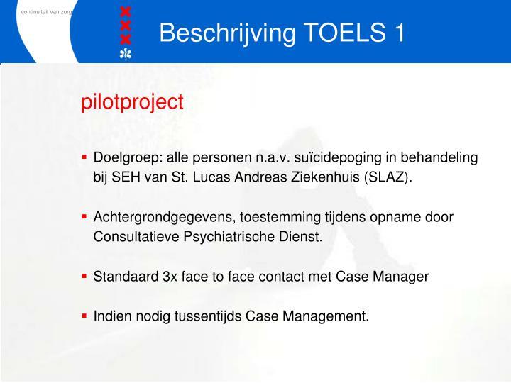 Beschrijving TOELS 1