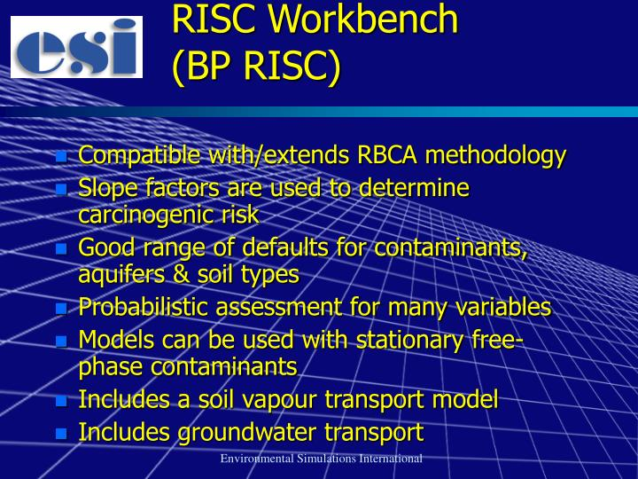 RISC Workbench          (BP RISC)