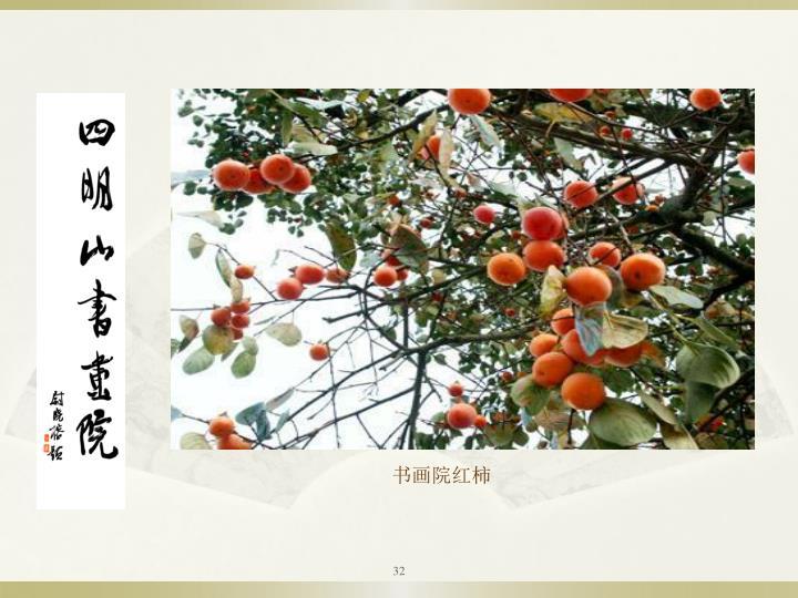 书画院红柿