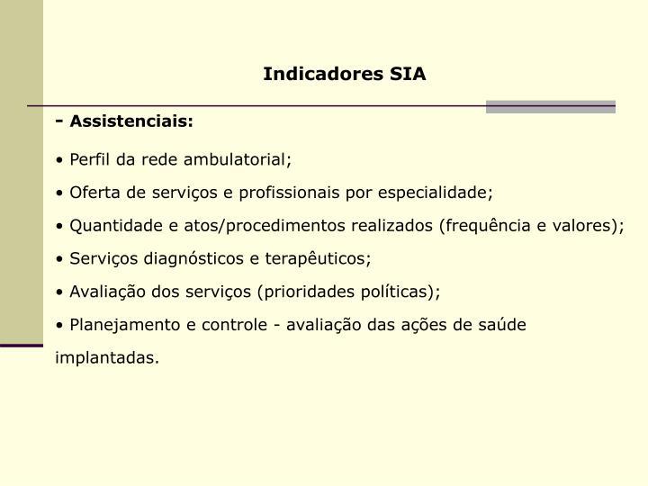 Indicadores SIA