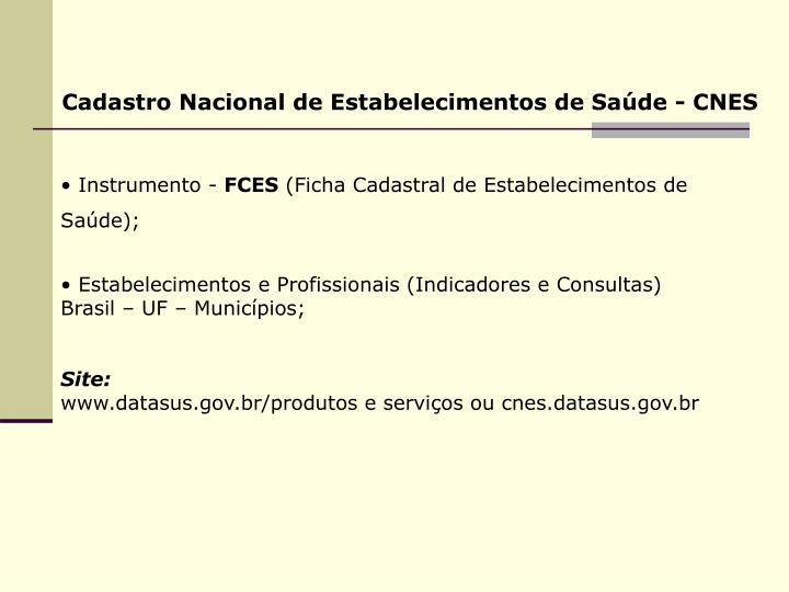 Cadastro Nacional de Estabelecimentos de Saúde - CNES