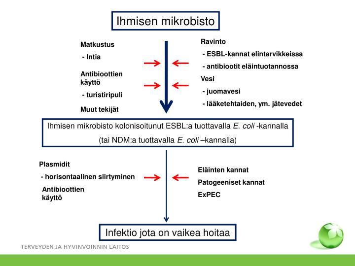 Ihmisen mikrobisto