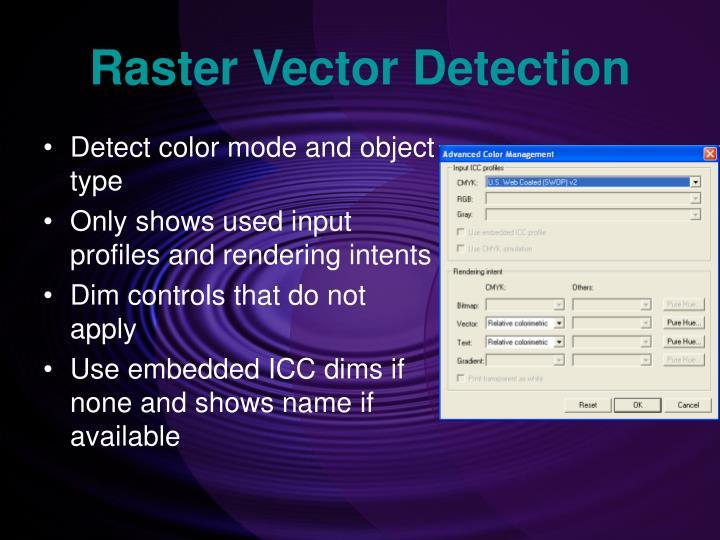 Raster Vector Detection