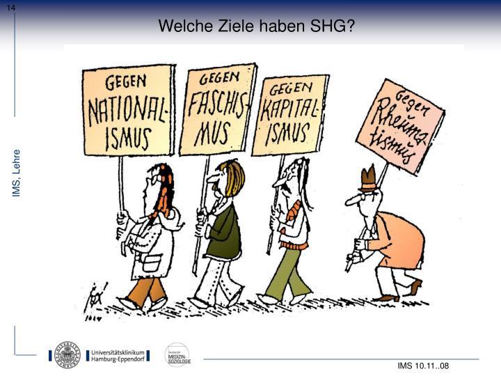 Welche Ziele haben SHG?