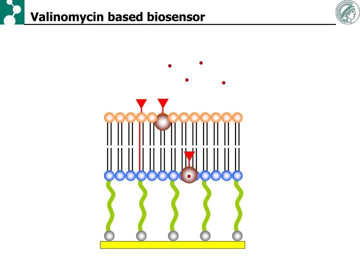 Valinomycin based biosensor