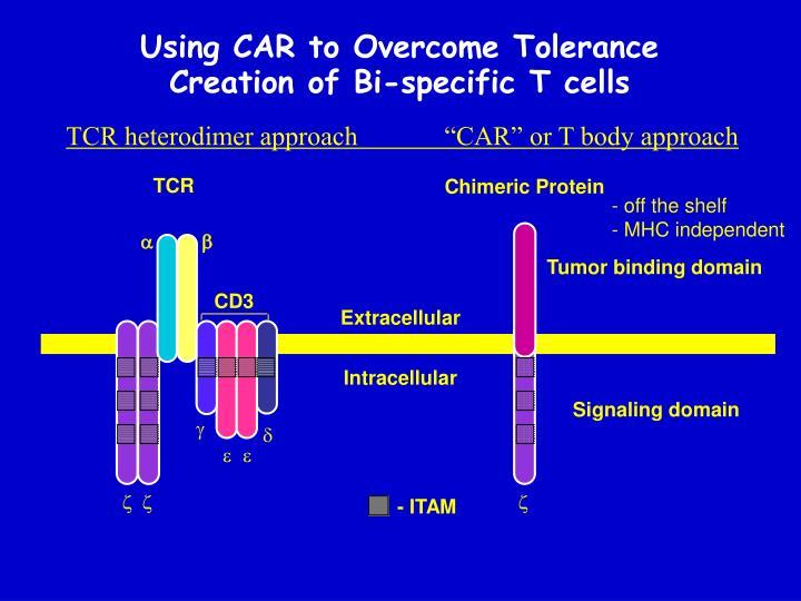 Using CAR to Overcome Tolerance