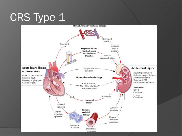 CRS Type 1