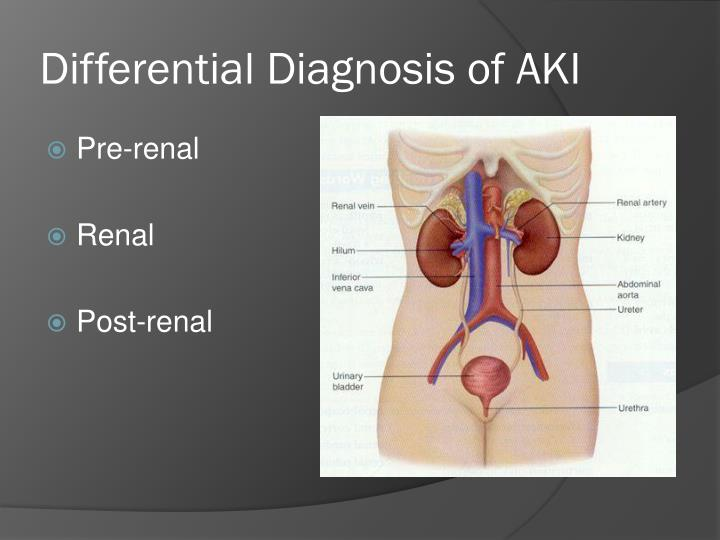 Differential Diagnosis of AKI