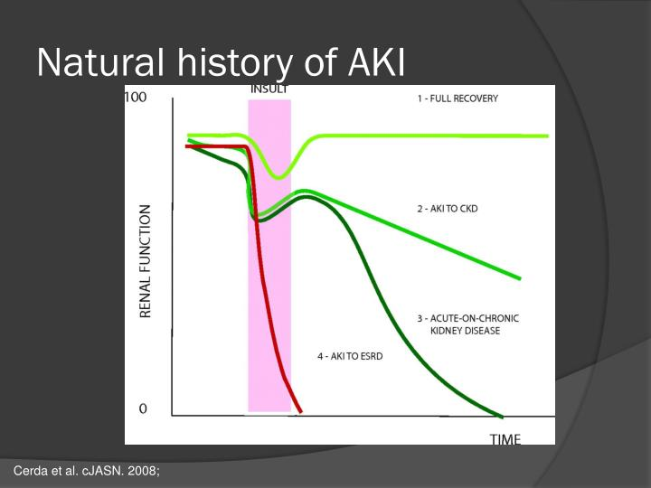 Natural history of AKI