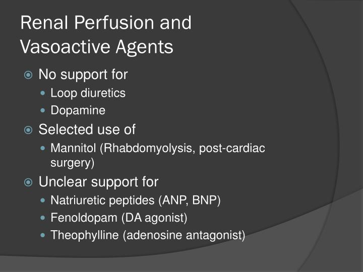 Renal Perfusion and