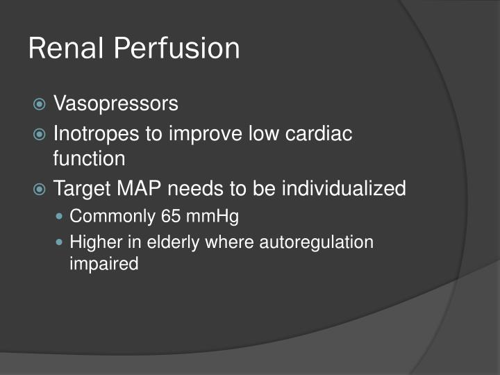 Renal Perfusion