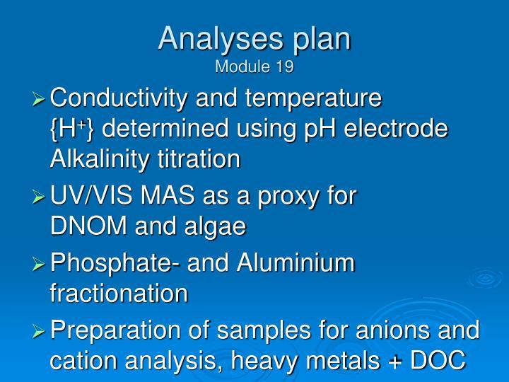 Analyses plan