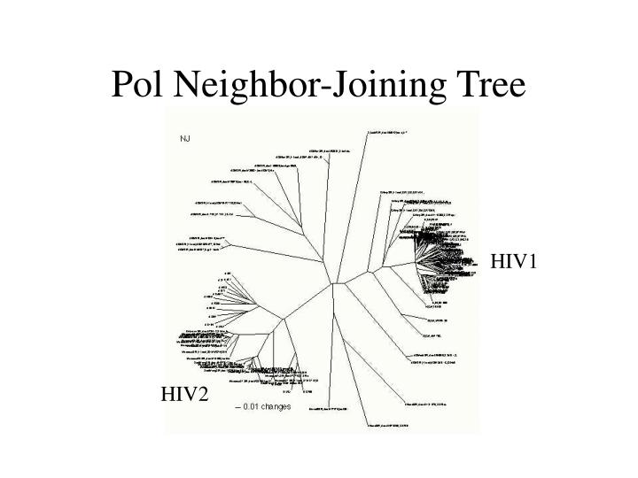 Pol Neighbor-Joining Tree
