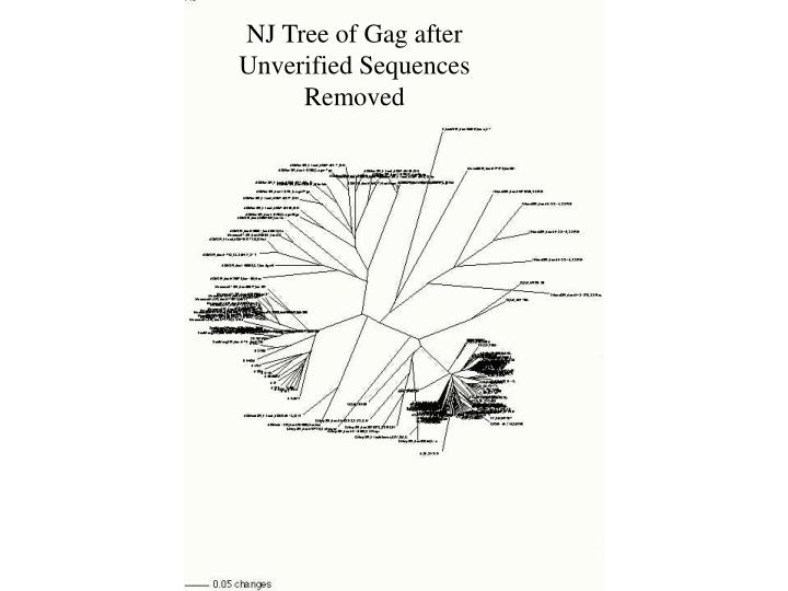 NJ Tree of Gag after Unverified Sequences Removed