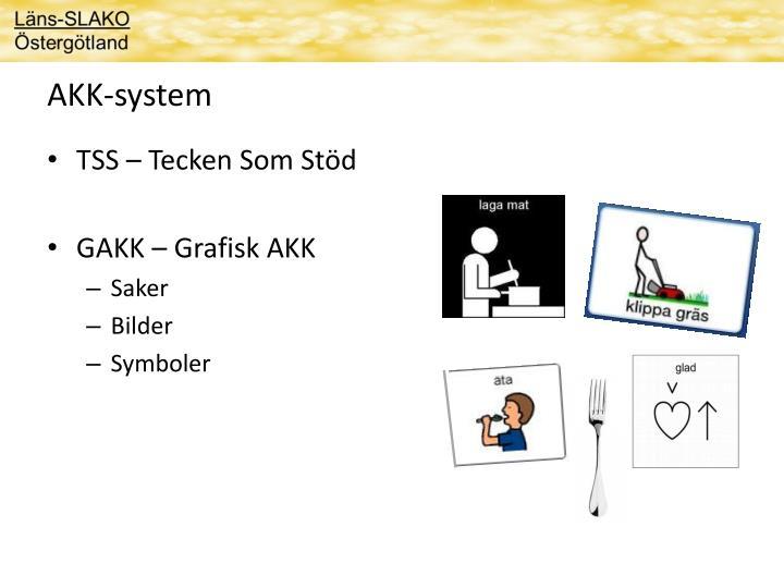 AKK-system