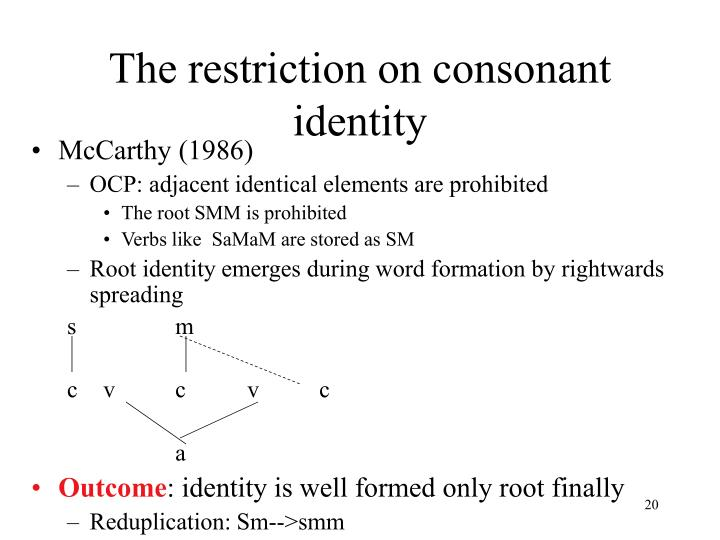 The restriction on consonant identity