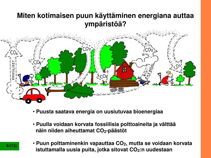 Miten kotimaisen puun käyttäminen energiana auttaa ympäristöä?