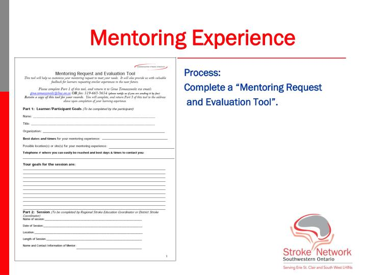 Mentoring Experience