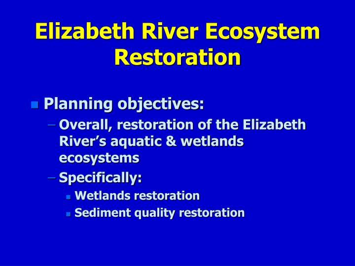 Elizabeth River Ecosystem Restoration