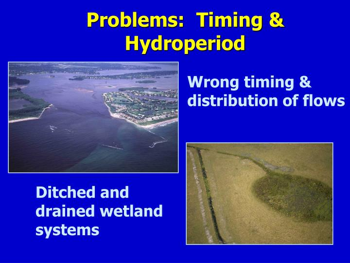 Problems:  Timing & Hydroperiod