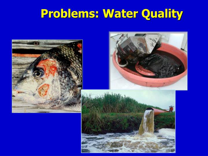 Problems: Water Quality