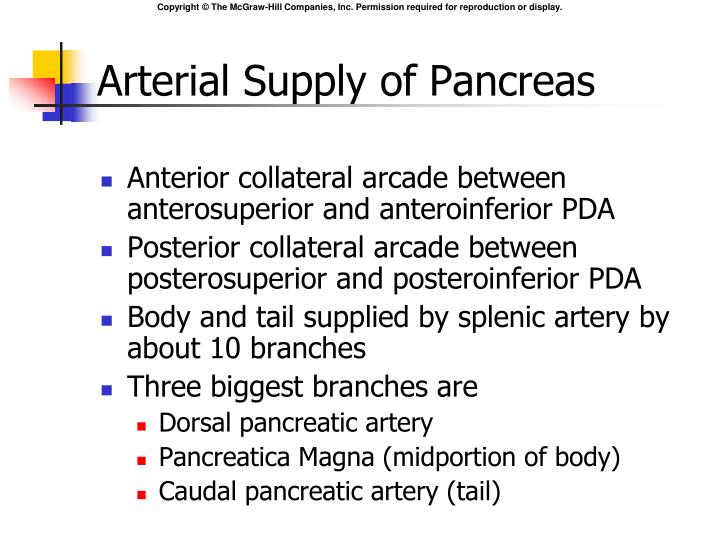 Arterial Supply of Pancreas