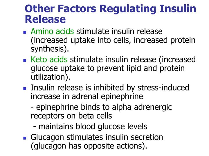 Other Factors Regulating Insulin Release
