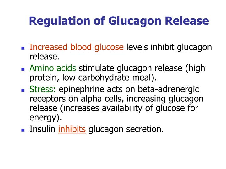 Regulation of Glucagon Release