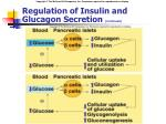 regulation of insulin and glucagon secretion continued