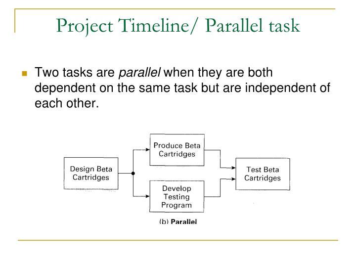 Project Timeline/ Parallel task