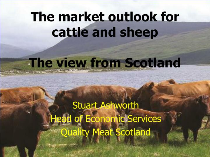 The market outlook for cattle and sheep the view from scotland
