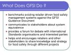 what does gfsi do