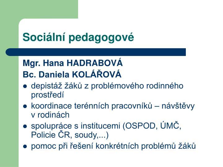 Sociální pedagogové