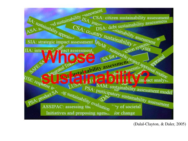 Whose sustainability?