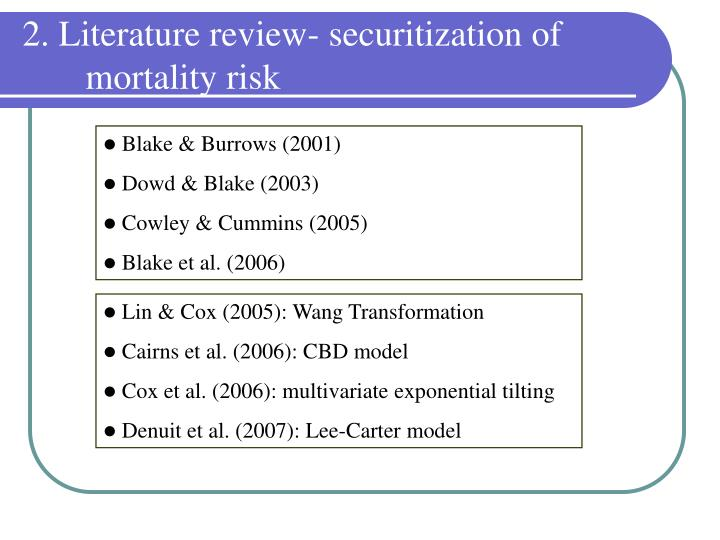 2. Literature review- securitization of