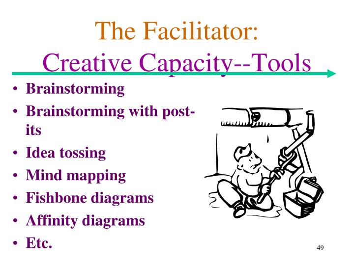 The Facilitator: