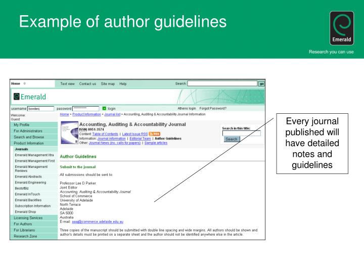 Example of author guidelines