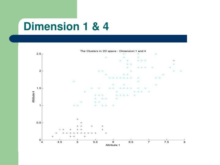 Dimension 1 & 4