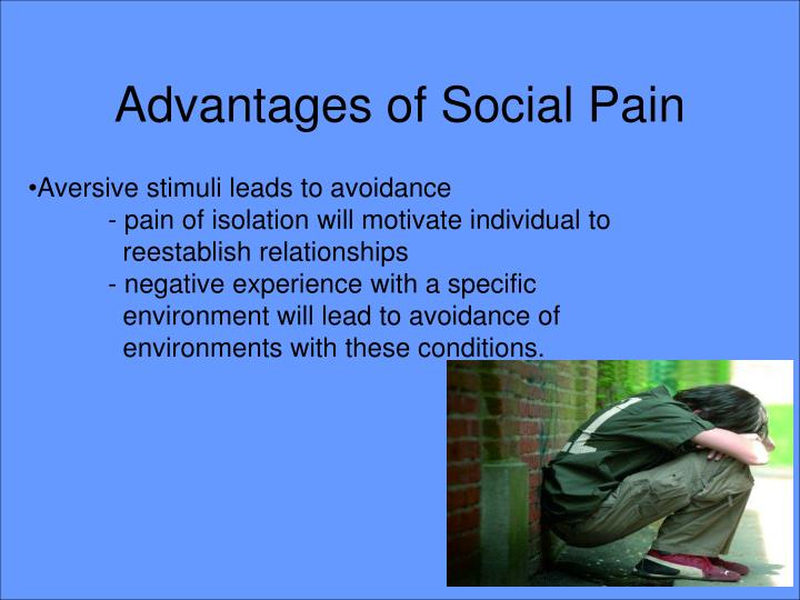 Advantages of Social Pain