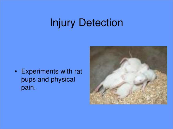 Injury Detection